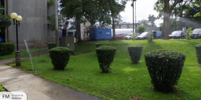 Jardines de la Facultad de Medicina